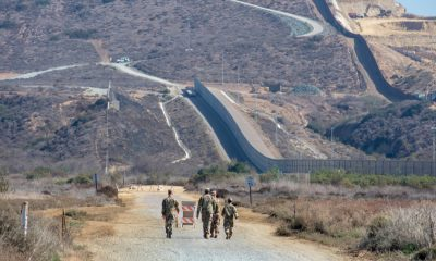 border immigration