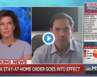 Marco Rubio Gets Confronted By MSNBC Host Over Saying Some Journalists 'Giddy' Over COVID-19