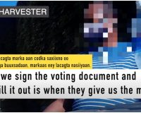 Ilhan Omar Caught Red-Handed In 'Cash-For-Ballots Harvesting Scheme' — Project Veritas Report